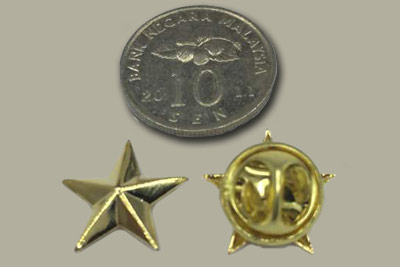 Gold color 3D star pin