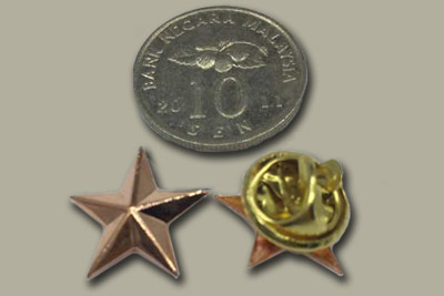 rose Gold color 3D star pin