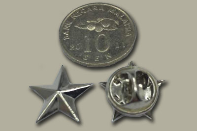 silver color 3D star pin